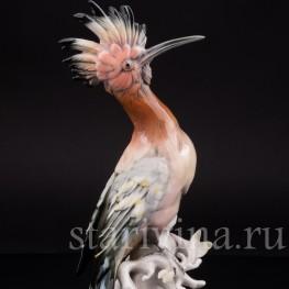 Фарфоровая статуэтка птицы Удод, Karl Ens, Германия, 1940-50 гг.